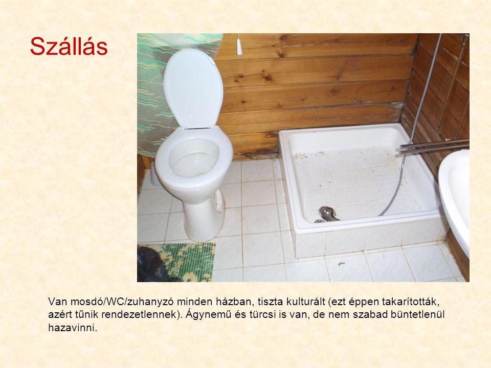 Szállás Van mosdó/WC/zuhanyzó minden házban, tiszta kulturált (ezt éppen takarították, azért tűnik rendezetlennek). Ágynemű és türcsi is van, de nem s