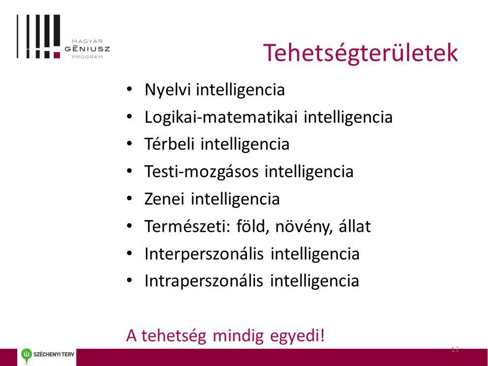 13 • Nyelvi intelligencia • Logikai-matematikai intelligencia • Térbeli intelligencia • Testi-mozgásos intelligencia • Zenei intelligencia • Természet