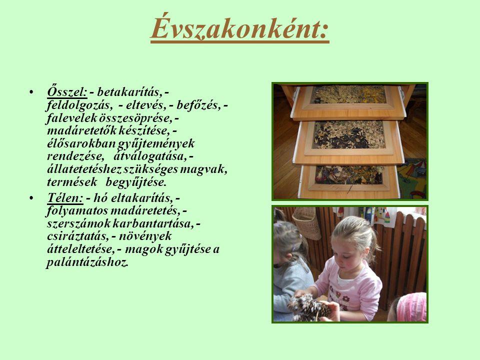 Évszakonként: •Ősszel: - betakarítás, - feldolgozás, - eltevés, - befőzés, - falevelek összesöprése, - madáretetők készítése, - élősarokban gyűjtemény