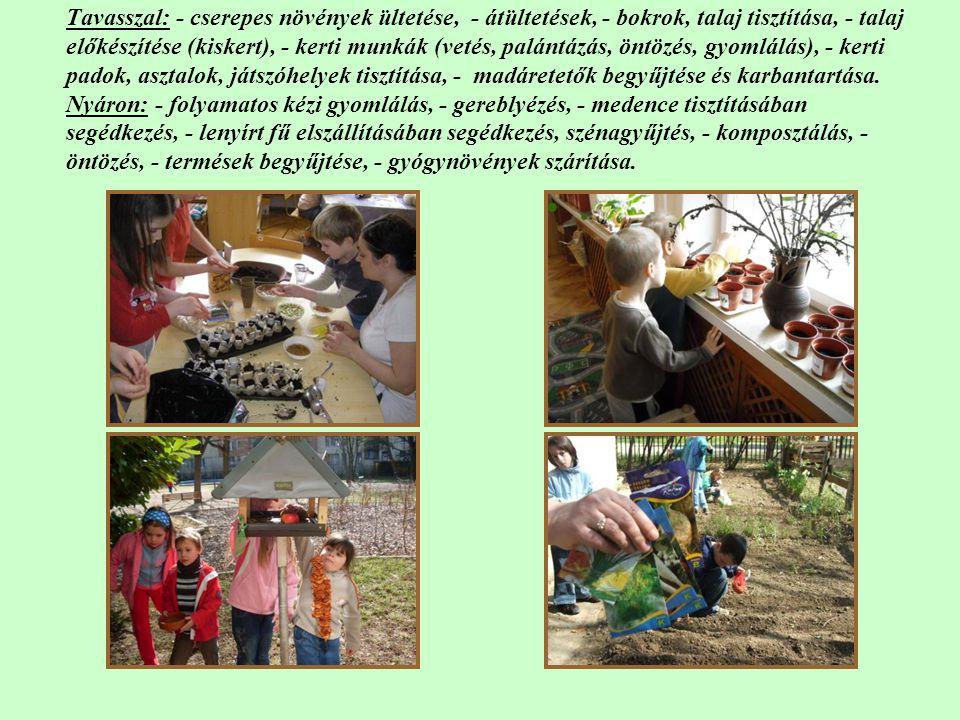 Tavasszal: - cserepes növények ültetése, - átültetések, - bokrok, talaj tisztítása, - talaj előkészítése (kiskert), - kerti munkák (vetés, palántázás,