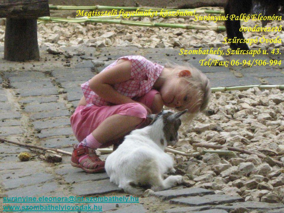 Megtisztelő figyelmüket köszönöm! Surányiné Palkó Eleonóra óvodavezető Szűrcsapó Óvoda Szombathely, Szűrcsapó u. 43. Tel/Fax: 06-94/506-994 suranyine.