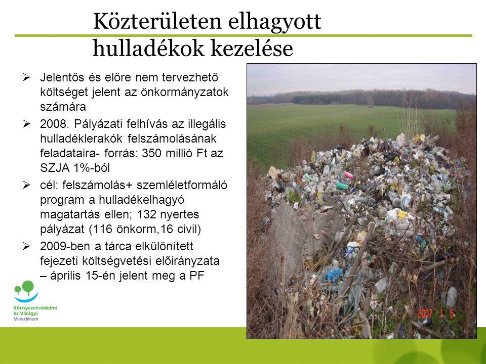 Közterületen elhagyott hulladékok kezelése  Jelentős és előre nem tervezhető költséget jelent az önkormányzatok számára  2008.