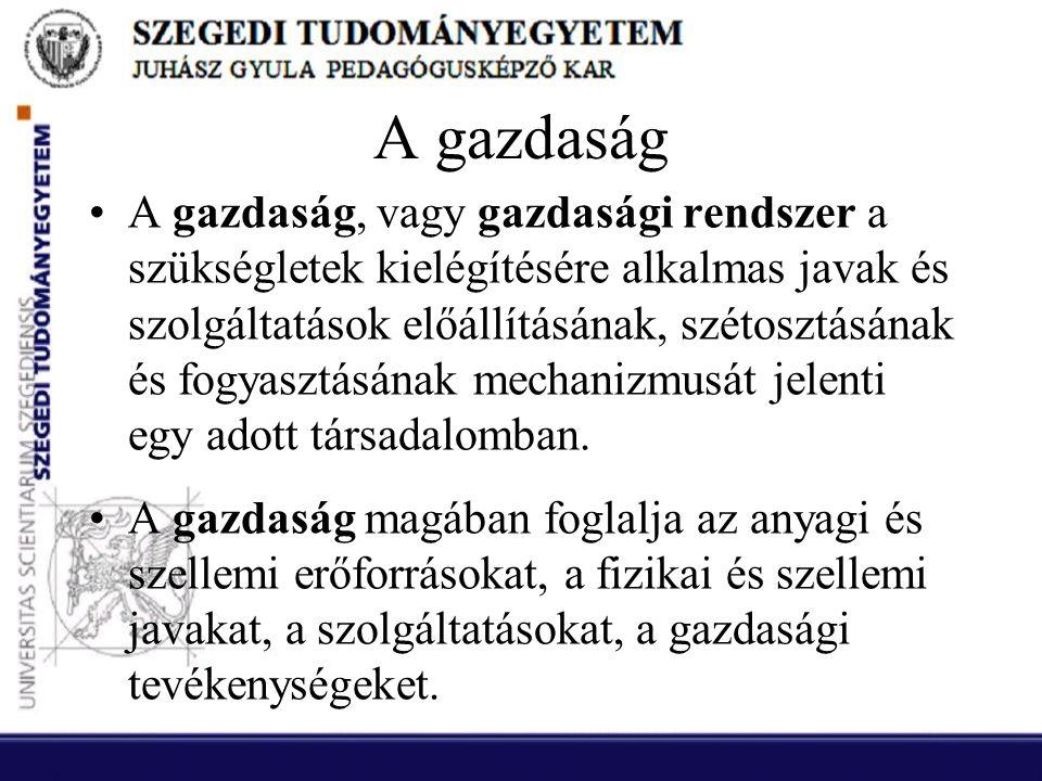 Önkormányzati (helyi) adók •2.