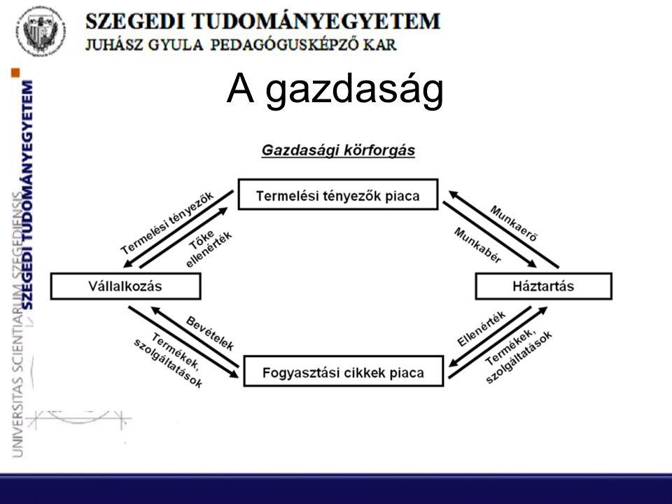 Letétbe helyezés és nyilvánosságra hozatal •Változás: 2009.