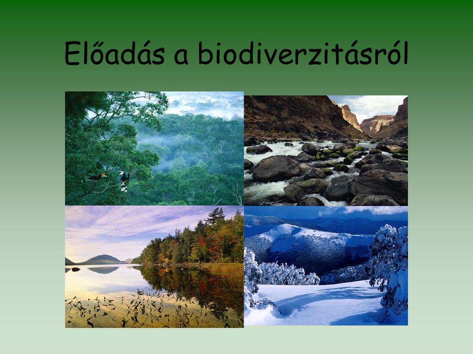 Előadás a biodiverzitásról