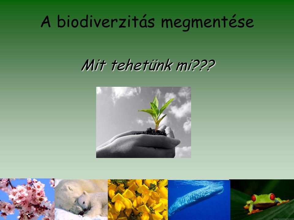 A biodiverzitás megmentése Mit tehetünk mi???