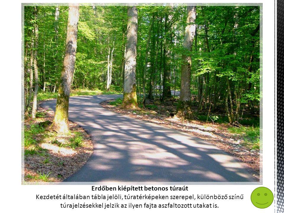 Erdőben kiépített betonos túraút Kezdetét általában tábla jelöli, túratérképeken szerepel, különböző színű túrajelzésekkel jelzik az ilyen fajta aszfaltozott utakat is.