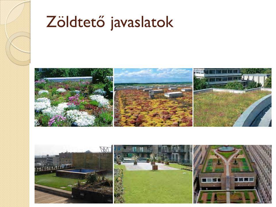 Zöldtető javaslatok