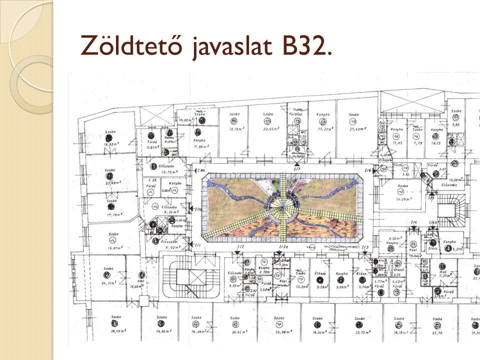 Zöldtető javaslat B32.