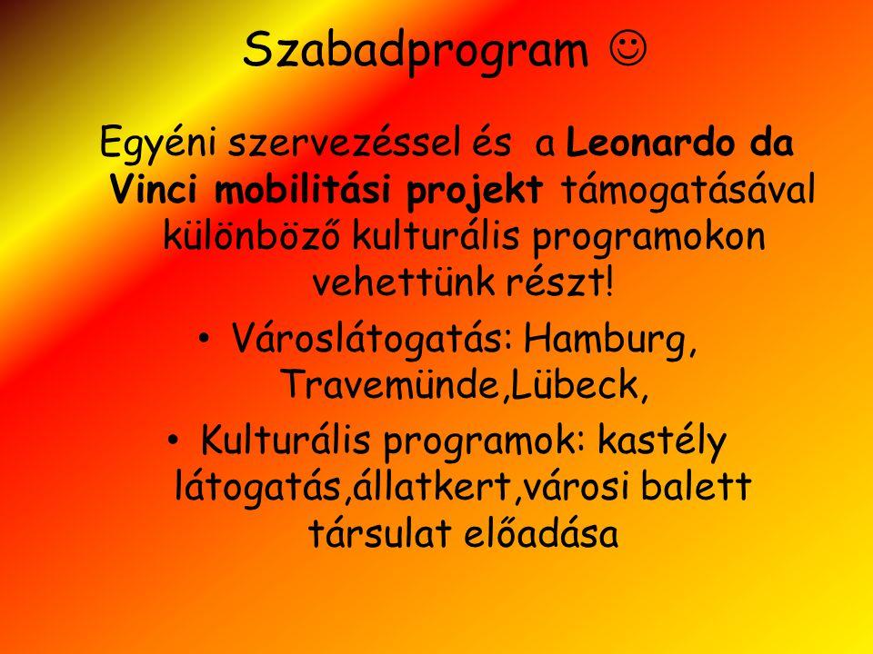 Szabadprogram  Egyéni szervezéssel és a Leonardo da Vinci mobilitási projekt támogatásával különböző kulturális programokon vehettünk részt! • Városl