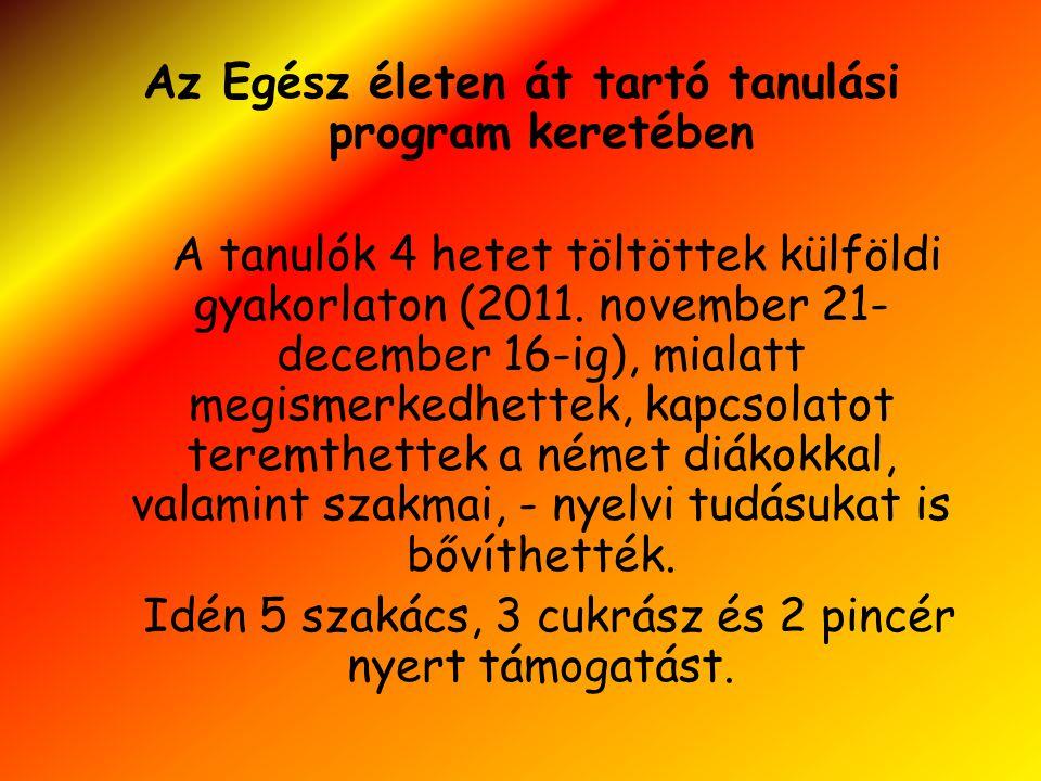 Az Egész életen át tartó tanulási program keretében A tanulók 4 hetet töltöttek külföldi gyakorlaton (2011. november 21- december 16-ig), mialatt megi