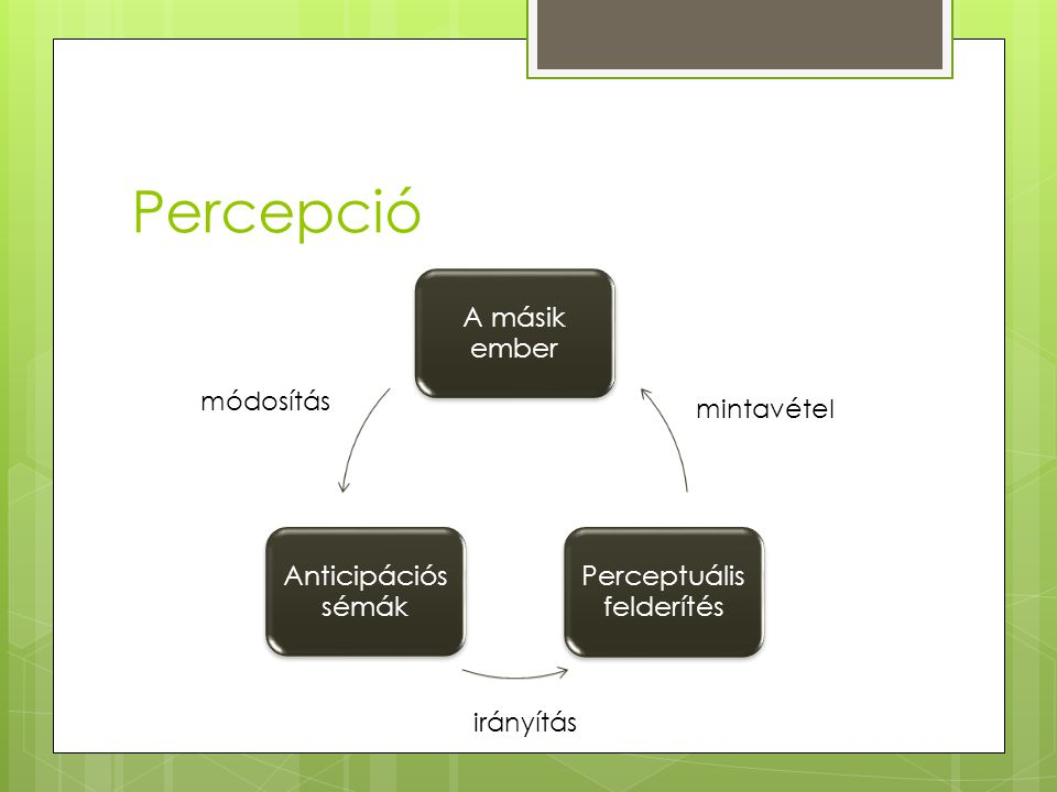 Percepció A másik ember Anticipációs sémák Perceptuális felderítés módosítás mintavétel irányítás