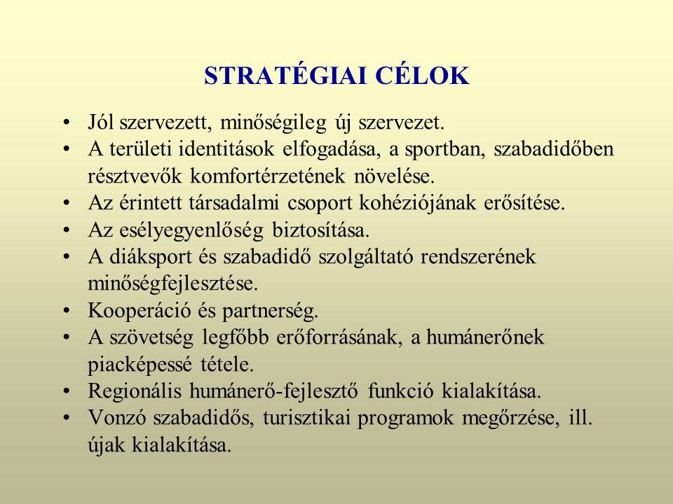 STRATÉGIAI CÉLOK •Jól szervezett, minőségileg új szervezet.