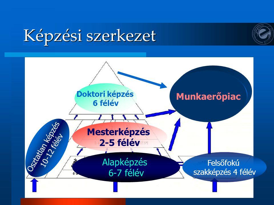 Képzési szerkezet Mesterképzés 2-5 félév Alapképzés 6-7 félév Doktori képzés 6 félév Munkaerőpiac Felsőfokú szakképzés 4 félév Osztatlan képzés 10-12 félév