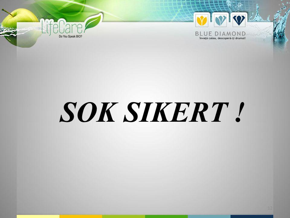 12 SOK SIKERT !