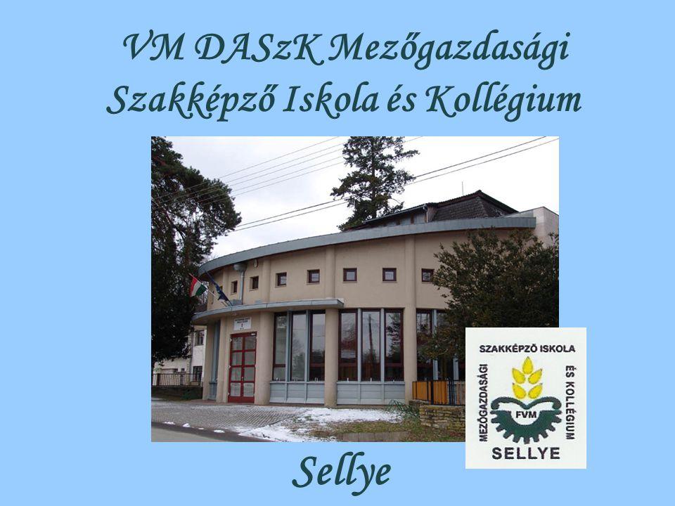 VM DASzK Mezőgazdasági Szakképző Iskola és Kollégium Sellye