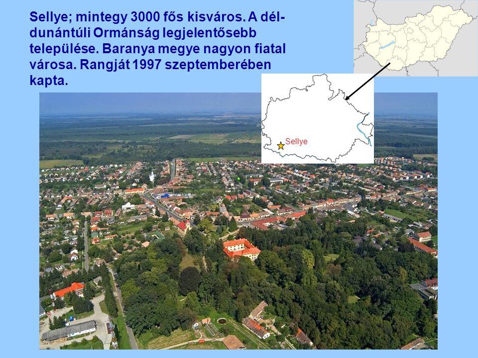 Sellye; mintegy 3000 fős kisváros. A dél- dunántúli Ormánság legjelentősebb települése. Baranya megye nagyon fiatal városa. Rangját 1997 szeptemberébe