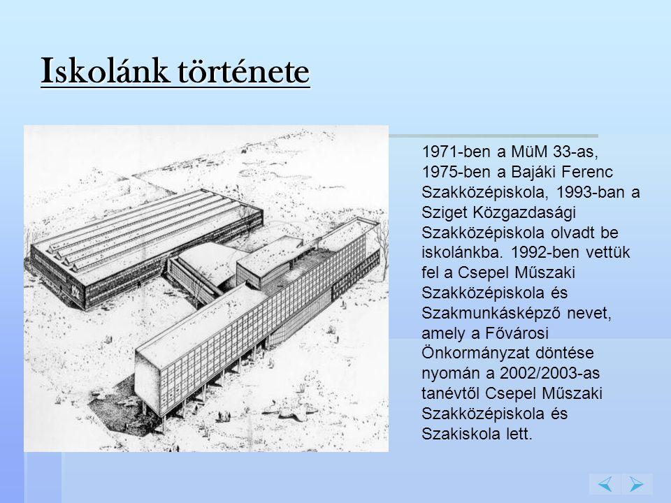 1971-ben a MüM 33-as, 1975-ben a Bajáki Ferenc Szakközépiskola, 1993-ban a Sziget Közgazdasági Szakközépiskola olvadt be iskolánkba. 1992-ben vettük f