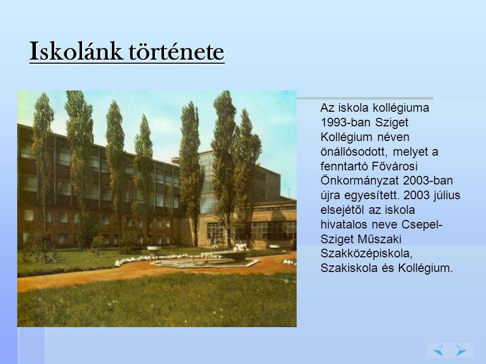 Az iskola kollégiuma 1993-ban Sziget Kollégium néven önállósodott, melyet a fenntartó Fővárosi Önkormányzat 2003-ban újra egyesített. 2003 július else