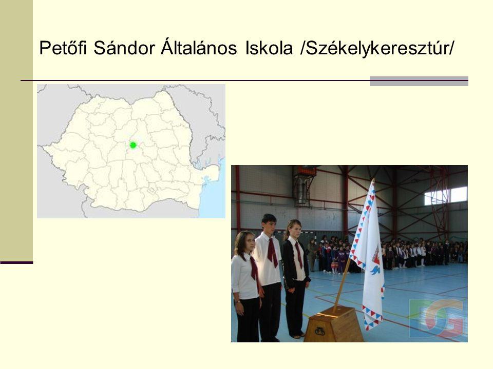 2010. Júniusi találkozó az erdélyi iskolásokkal – Gyömrő - Balaton