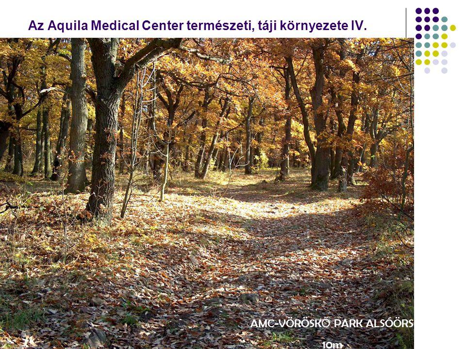 Az Aquila Medical Center természeti, táji környezete IV. AMC-VÖRÖSK Ő PARK ALSÓÖRS 10m