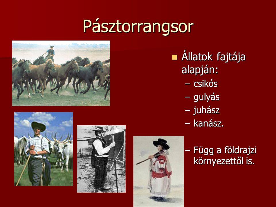 Pásztorrangsor  Állatok fajtája alapján: –csikós –gulyás –juhász –kanász. –Függ a földrajzi környezettől is.