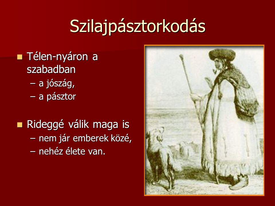 Szilajpásztorkodás  Télen-nyáron a szabadban –a jószág, –a pásztor  Rideggé válik maga is –nem jár emberek közé, –nehéz élete van.