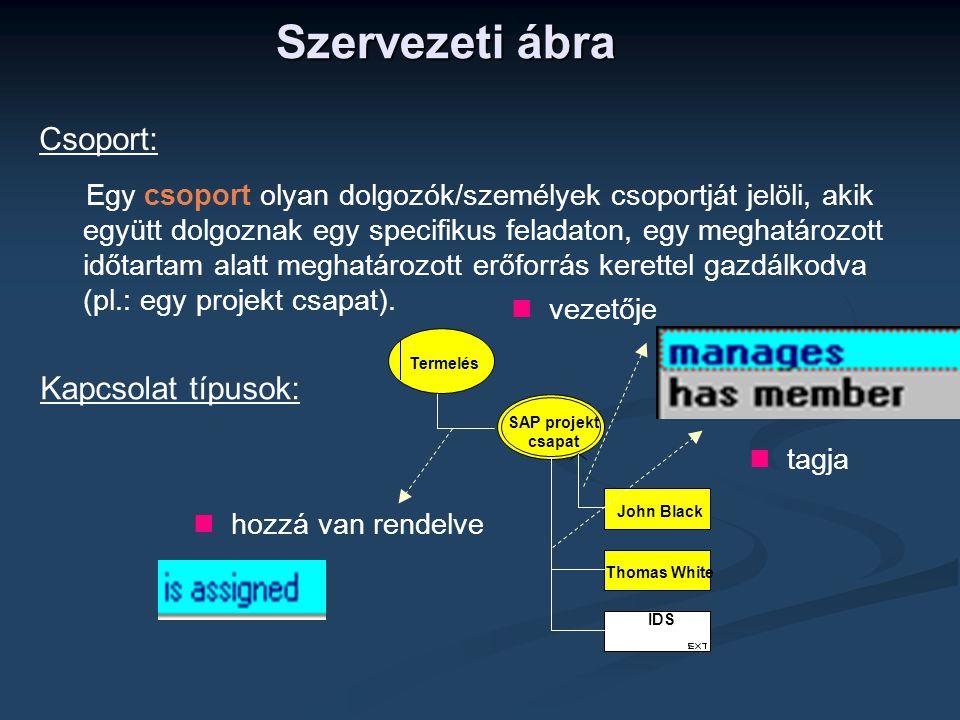 Szervezeti ábra Egy csoport olyan dolgozók/személyek csoportját jelöli, akik együtt dolgoznak egy specifikus feladaton, egy meghatározott időtartam alatt meghatározott erőforrás kerettel gazdálkodva (pl.: egy projekt csapat).