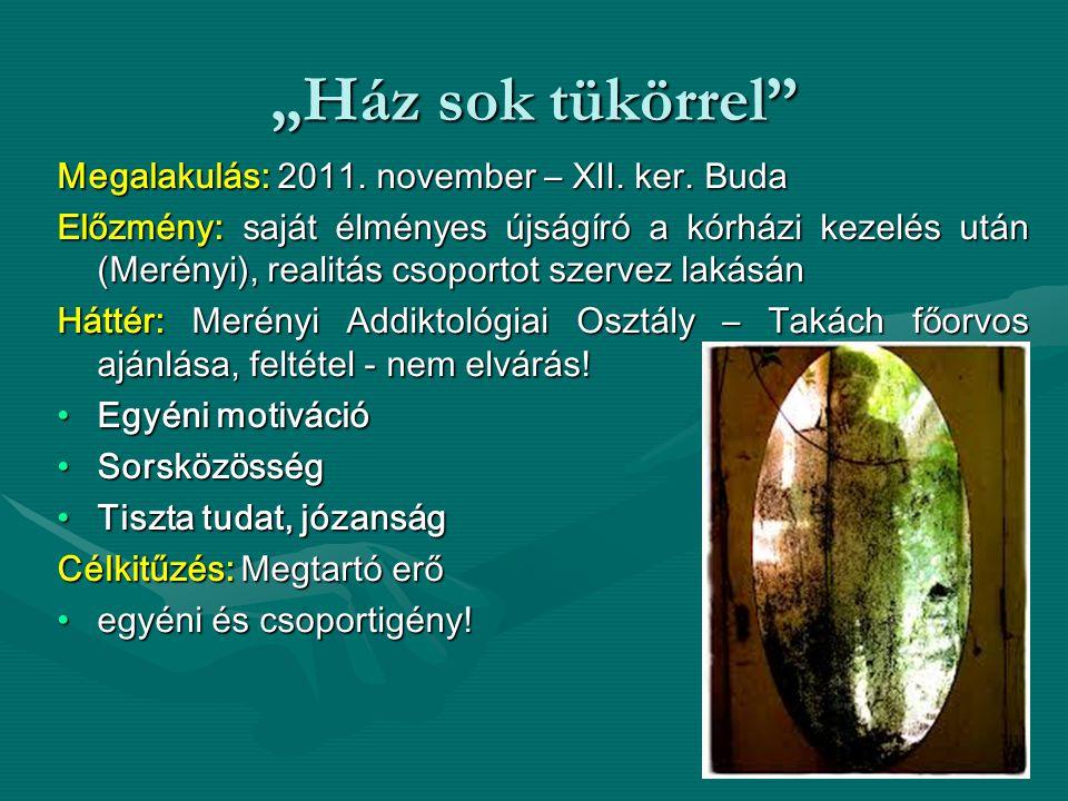 """""""Ház sok tükörrel"""" Megalakulás: 2011. november – XII. ker. Buda Előzmény: saját élményes újságíró a kórházi kezelés után (Merényi), realitás csoportot"""