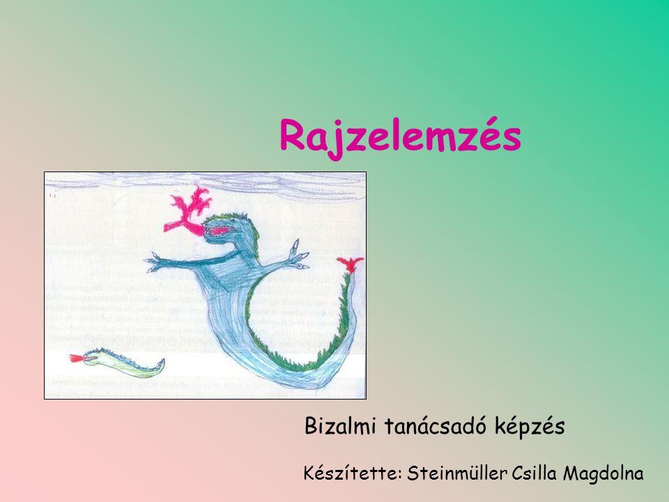 Rajzelemzés Bizalmi tanácsadó képzés Készítette: Steinmüller Csilla Magdolna