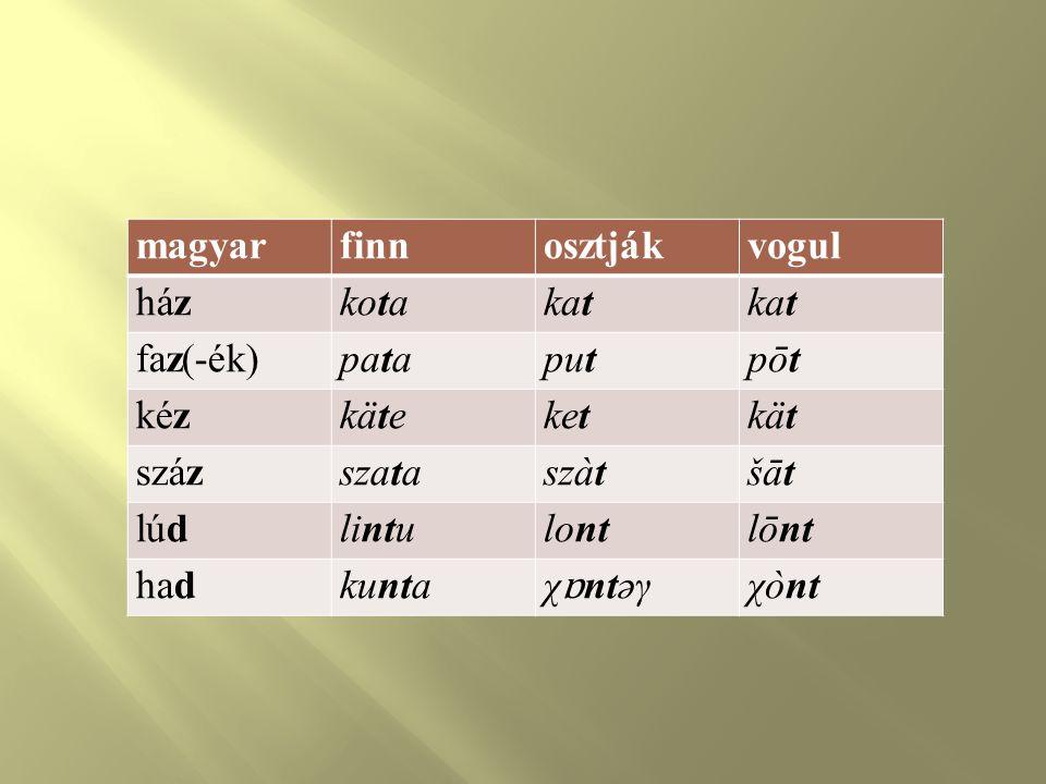 A finnugor (ugor) alapszókincsbeli fogalomkörök  testrészek : fő, száj, áll, fül, szem, fog, láb, mell, máj, bőr, ágyék, far, epe, here  rokoni kapcsolatok : apa, anya, fiú, leány, meny, ángy, öcs, vő, férj  elemi cselekvések : él, hal, lesz, szül, van, áll, megy, ül, eszik, fal, lát, les, dug  számok : egy, két, három, négy, öt, hat, hét, száz  természet tárgyai, jelenségei : csillag, ég, világ, jég, hó, esik, fagy, víz, ár, hab, tó, hegy