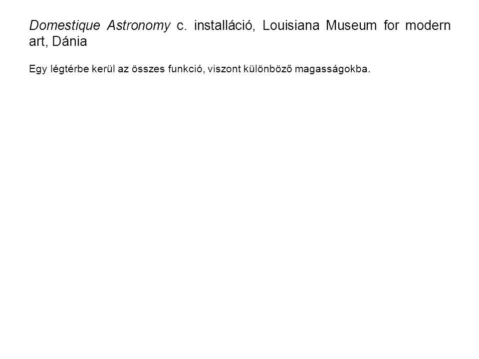 Domestique Astronomy c.