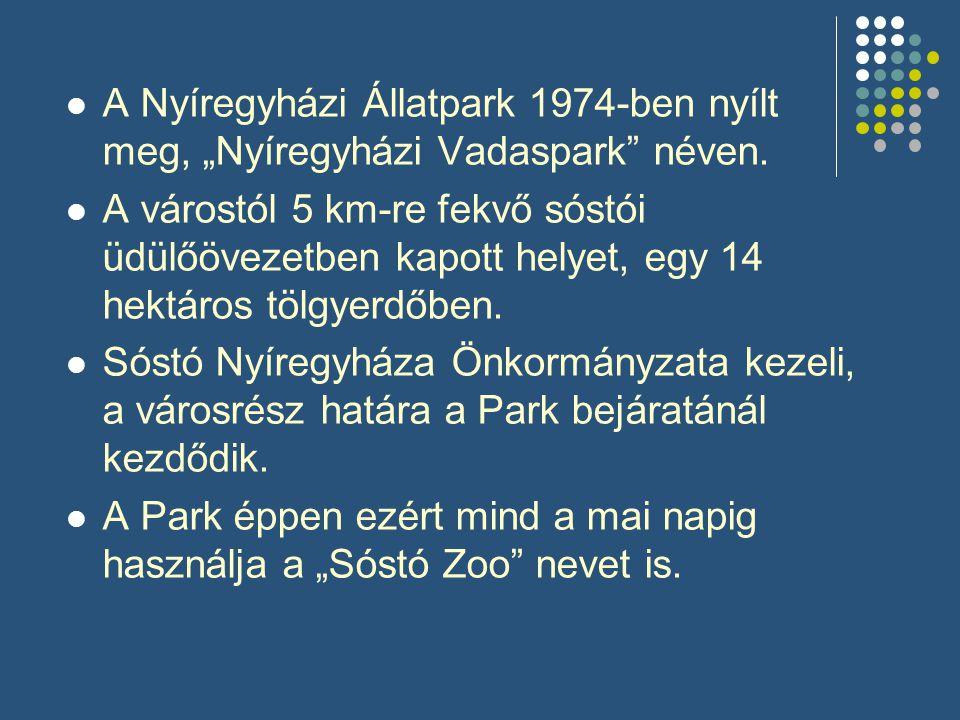 """ A Nyíregyházi Állatpark 1974-ben nyílt meg, """"Nyíregyházi Vadaspark"""" néven.  A várostól 5 km-re fekvő sóstói üdülőövezetben kapott helyet, egy 14 he"""