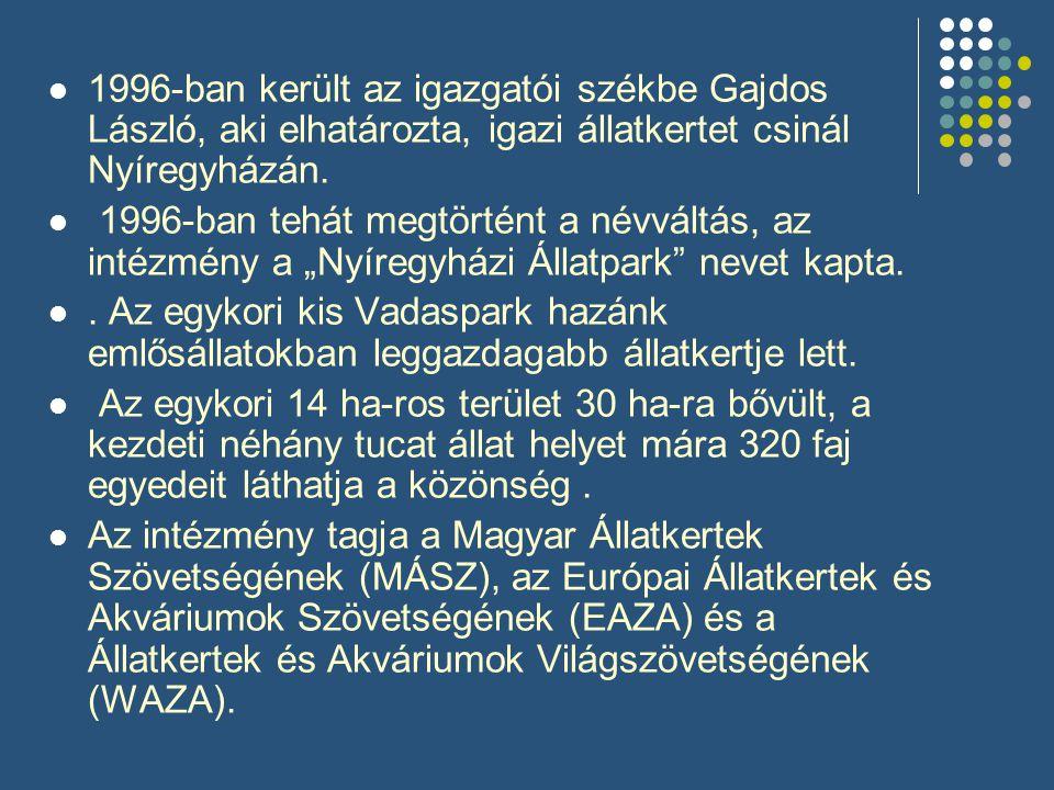  1996-ban került az igazgatói székbe Gajdos László, aki elhatározta, igazi állatkertet csinál Nyíregyházán.  1996-ban tehát megtörtént a névváltás,
