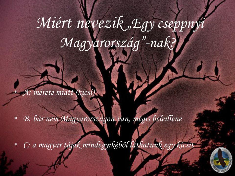 """Miért nevezik """"Egy cseppnyi Magyarország""""-nak? *A*A: mérete miatt (kicsi) *B*B: bár nem Magyarországon van, mégis beleillene *C*C: a magyar tájak mind"""