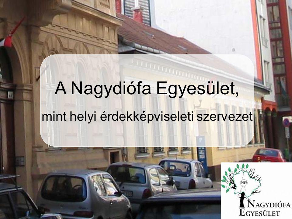 A Nagydiófa Egyesület, mint helyi érdekképviseleti szervezet