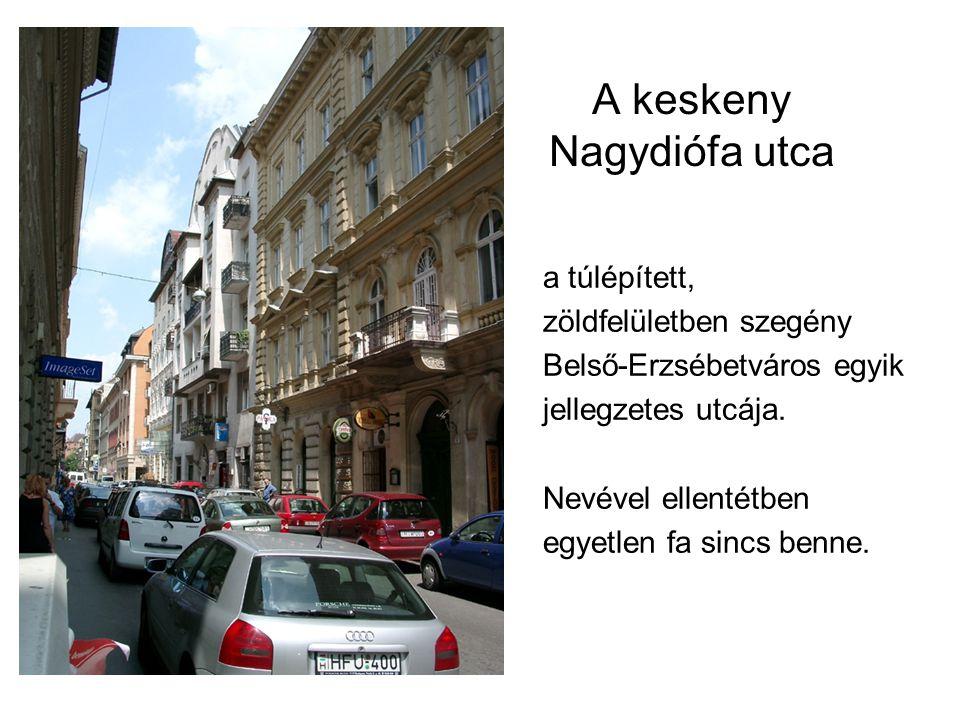 A keskeny Nagydiófa utca a túlépített, zöldfelületben szegény Belső-Erzsébetváros egyik jellegzetes utcája.