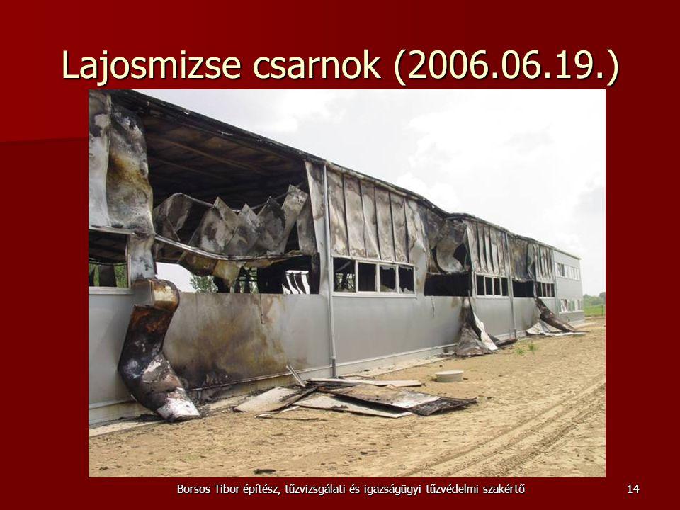 Borsos Tibor építész, tűzvizsgálati és igazságügyi tűzvédelmi szakértő Lajosmizse csarnok (2006.06.19.) 14