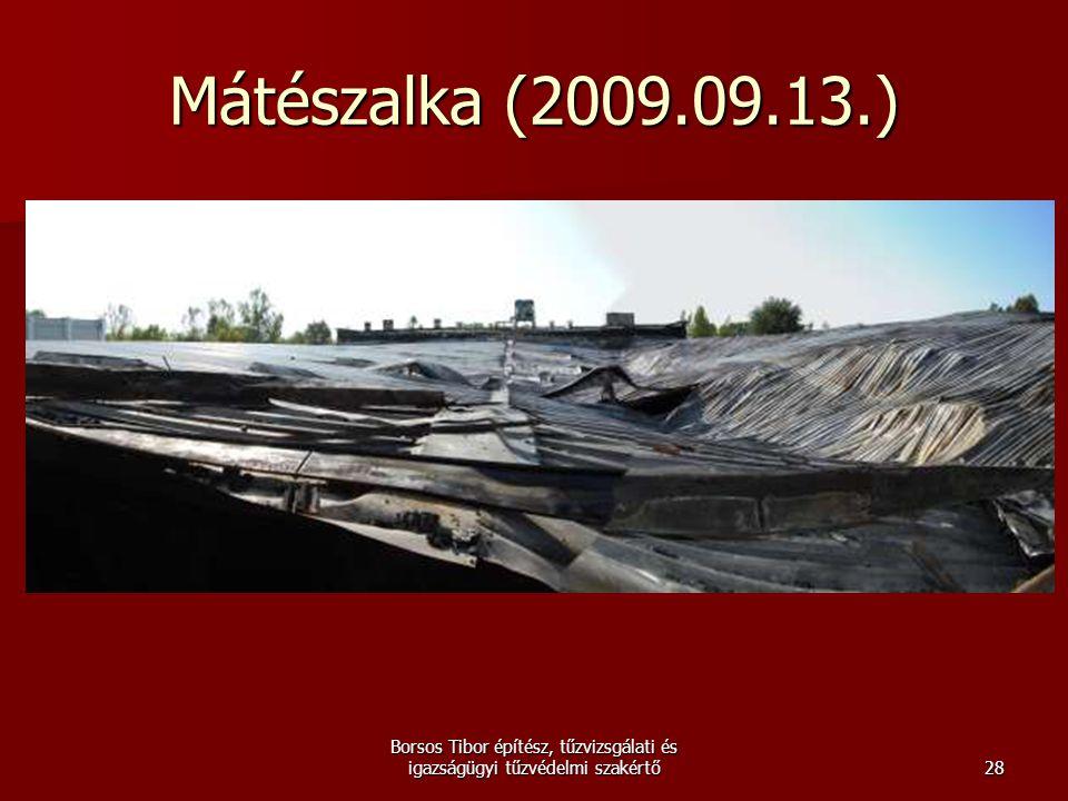 Mátészalka (2009.09.13.) Borsos Tibor építész, tűzvizsgálati és igazságügyi tűzvédelmi szakértő28