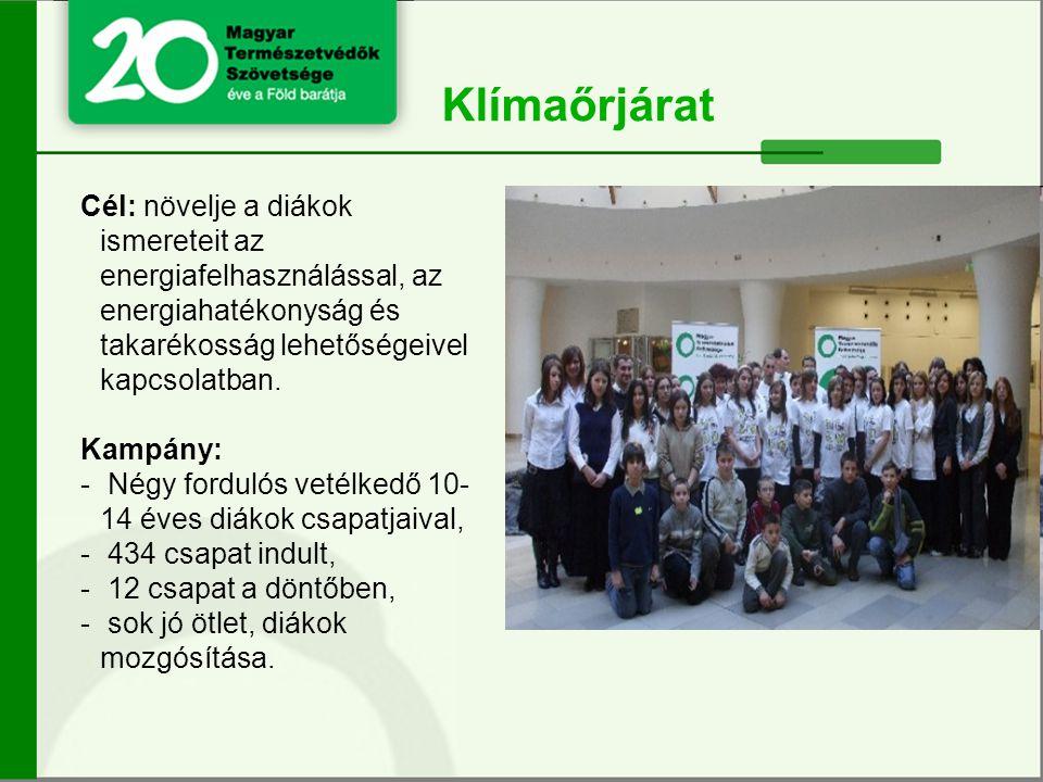 Cél: növelje a diákok ismereteit az energiafelhasználással, az energiahatékonyság és takarékosság lehetőségeivel kapcsolatban.