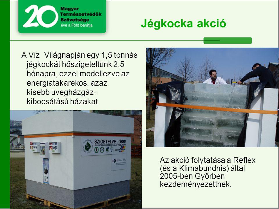 A Víz Világnapján egy 1,5 tonnás jégkockát hőszigeteltünk 2,5 hónapra, ezzel modellezve az energiatakarékos, azaz kisebb üvegházgáz- kibocsátású házakat.