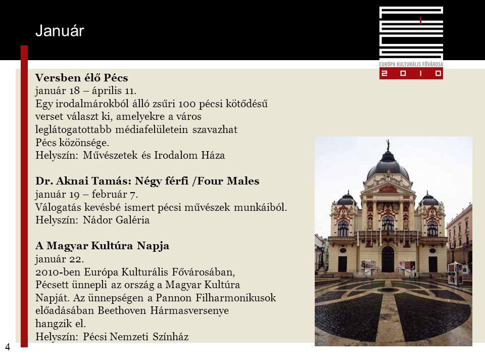 Pécs2010 – alapkoncepció 4 Versben élő Pécs január 18 – április 11. Egy irodalmárokból álló zsűri 100 pécsi kötődésű verset választ ki, amelyekre a vá
