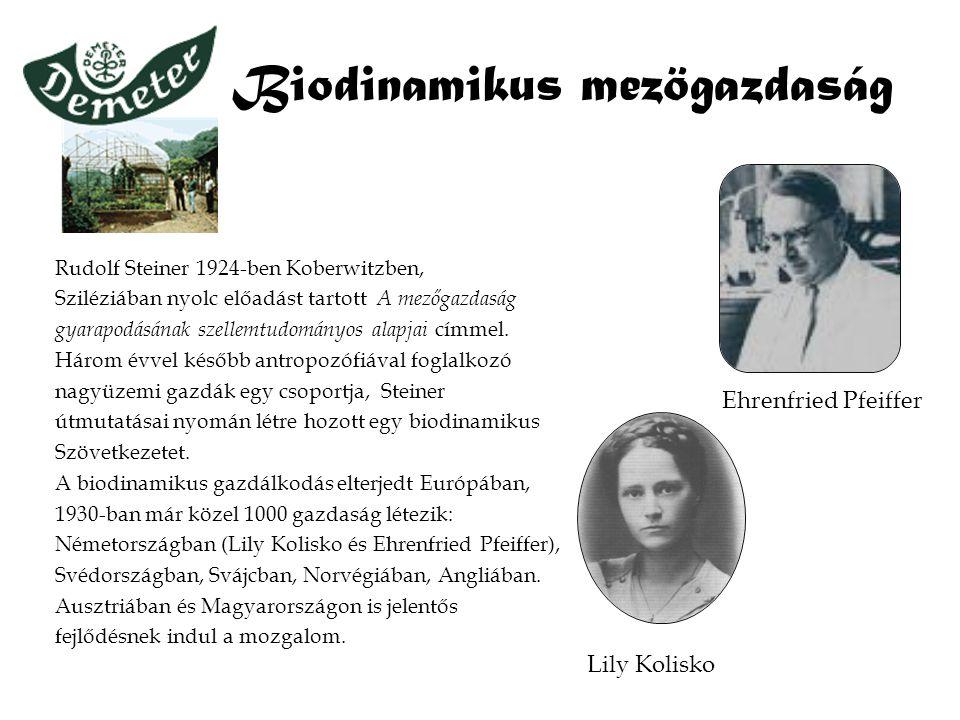 Biodinamikus mezögazdaság Rudolf Steiner 1924-ben Koberwitzben, Sziléziában nyolc előadást tartott A mezőgazdaság gyarapodásának szellemtudományos ala