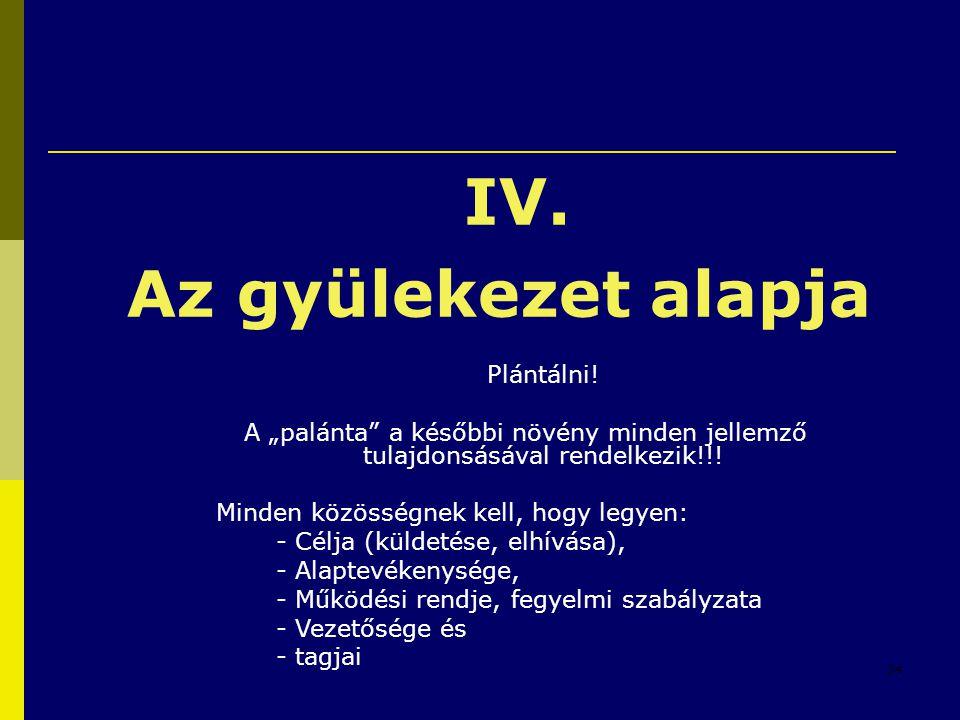 """24 IV. Az gyülekezet alapja Plántálni! A """"palánta"""" a későbbi növény minden jellemző tulajdonsásával rendelkezik!!! Minden közösségnek kell, hogy legye"""