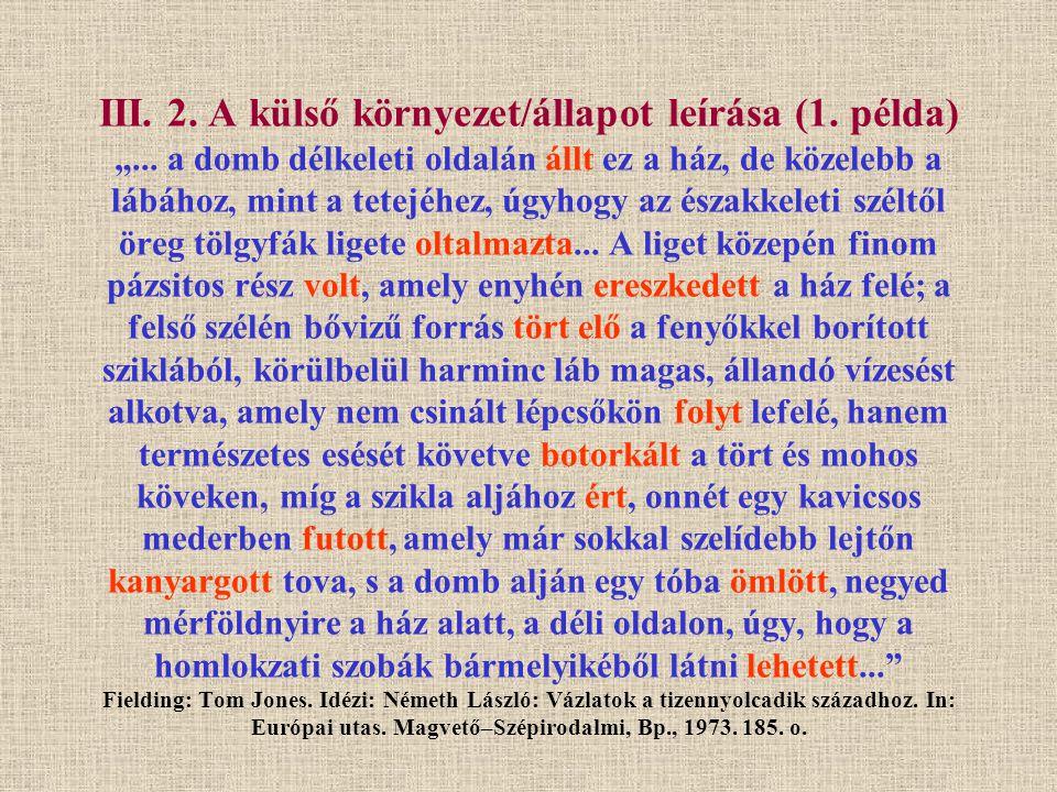 """III.2. A külső környezet/állapot leírása (1. példa) """"..."""