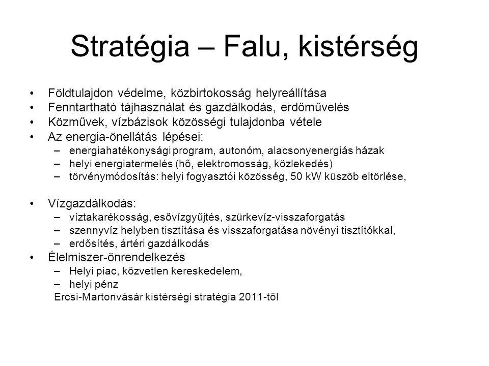 Stratégia – Falu, kistérség •Földtulajdon védelme, közbirtokosság helyreállítása •Fenntartható tájhasználat és gazdálkodás, erdőművelés •Közművek, víz
