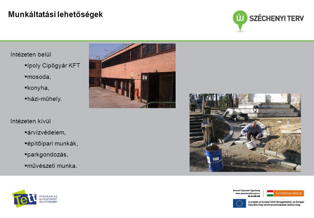 Munkáltatási lehetőségek Intézeten belül  Ipoly Cipőgyár KFT  mosoda,  konyha,  házi-műhely. Intézeten kívül  árvízvédelem,  építőipari munkák,