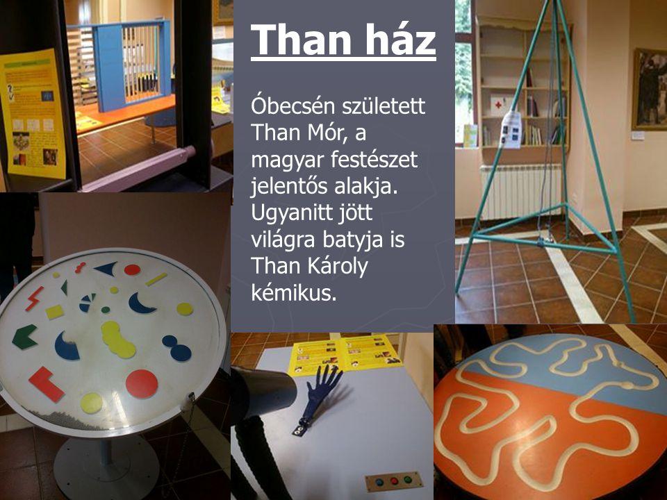 Than ház Óbecsén született Than Mór, a magyar festészet jelentős alakja. Ugyanitt jött világra batyja is Than Károly kémikus.