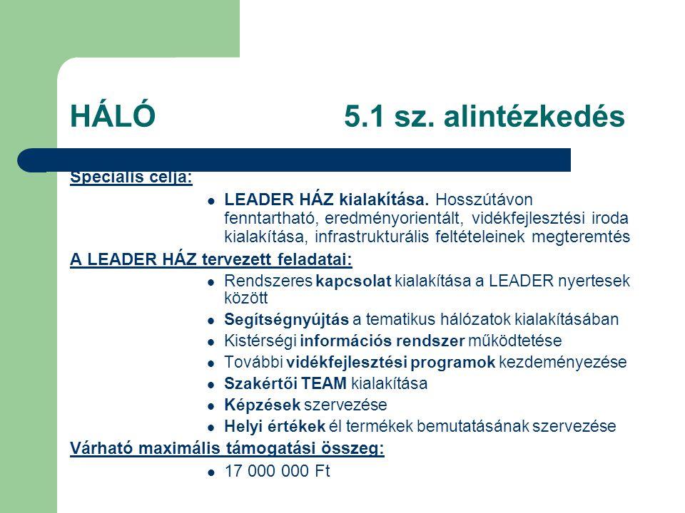 HÁLÓ5.1 sz. alintézkedés Speciális célja:  LEADER HÁZ kialakítása.