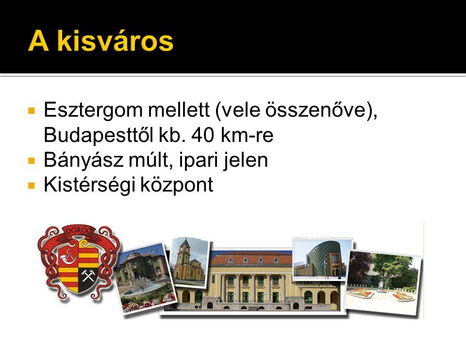  Esztergom mellett (vele összenőve), Budapesttől kb. 40 km-re  Bányász múlt, ipari jelen  Kistérségi központ